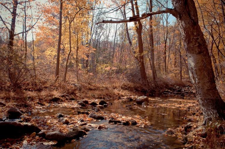 Autumn Hudson Valley Hike