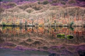 Lough Dan, Co. Wicklow, Niall Whelan Photography,