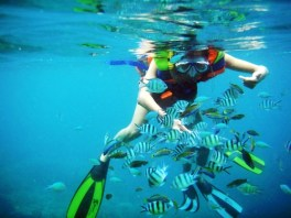 Snorkellinh in Turu Loto Beach Indonesia