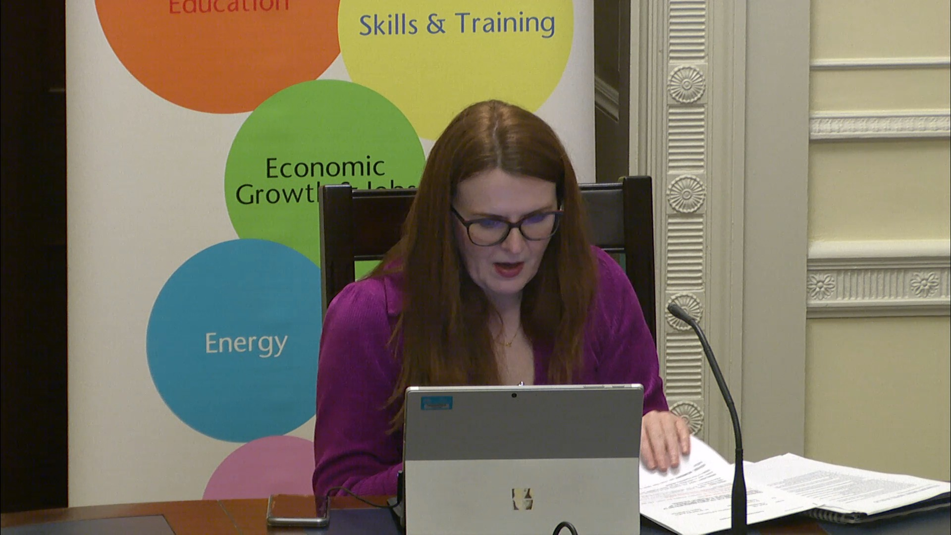 Economy Committee Meeting - Tuesday 2nd February 2021