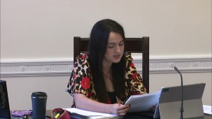 Ad Hoc Committee on a Bill of Rights Meeting - Thursday 1st July 2021