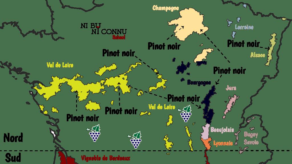 Le Pinot est le seul cépage en Bourgogne et, est produit aussi dans la Loire et en Alsace. Il est un cépage de la Champagne.