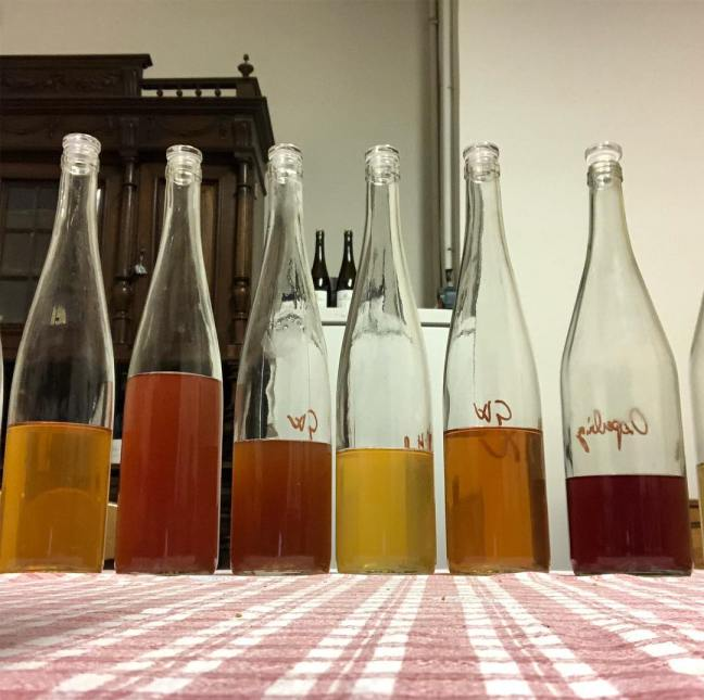 """Les différentes couleurs de macération de vins de """"macération"""" - Domaine Gross"""
