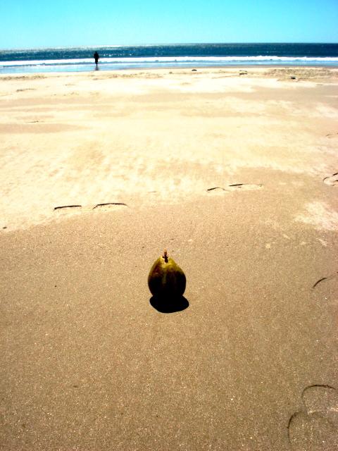 Pear on Playa Coco