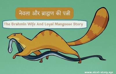 ब्राह्मण की पत्नी और नेवला की कहानी,The Brahman's Wife And Loyal Mangoose Story In Hindi,brahman ki patni aur newla, brahmin ki patni aur newla ki kahani, brahmin ki patni aur newla,brahman aur newla,The Brahman Wife And Loyal Mangoose Story,Brahmans Wife And Mangoose,Newla aur Brahmin, Brahmin And Loyal Mangoose, Brahmin And Mangoose, the Brahmin And the Mangoose, Brahmin And the Mangoose, पंचतंत्र की कहानी,panchtantra ki kahani,की कहानियां,कहानियां,कहानी कहानियां,panchtantra kahani,पंचतंत्र कहानियां,पंचतंत्र,पंचत्रंत की कहानी,The Brahmin Wife And Loyal Mangoose Story kahani panchtantra ki,कहानियां पंचतंत्र की,कहानियां कहानियां कहानी,कहानी की कहानी,kahani panchtantra,कहानियां पंचतंत्र,पञ्चतन्त्र,The Brahmin And Loyal Mangoose Story In Hindi, कहानी कहानियां कहानियां,पंचतंत्र की,पंचतंत्र की कहानियां पंचतंत्र की कहानियां,कहानी के,panchtantra ki kahani panchtantra ki kahani, wife of brahmin and the mangoose,wife of brahmin and mangoose,नेवला की कहानी,ब्राह्मण की कहानी,की की कहानी, kahani panchtantra ki kahani,नेवला की कहानी, newla ki kahani, the mangoose story,हिंदी की कहानियां, stories of hindi, story of hindi,hindi ki kahani, hindi ki kahaniyan,हिंदी कहानी, hindi story, hindi kahani, hindi stories, hindi kahaniyan,हिंदी कहानियां, hindi kahaniyan,कहानी हिंदी कहानी,story hindi story, stories hindi stories, kahani hindi kahani, पंचतंत्र की कहानियां, stories of panchtantra, story of panchtantra,panchtantra ki kahani, panchtantra ki kahaniyan,हिंदी स्टोरी, hindi kahani, hindi story, कहानी इन हिंदी, kahani in hindi, hindi me kahani, hindi me kahaniyan, kahaniyan in hindi,स्टोरी इन हिंदी, story in hindi, stories in hindi,हिन्दी कहानी,कहानी हिंदी, kahani hindi, kahaniyan hindi,हिंदी में कहानी,पंचतंत्र,panchtantra,कहानी हिंदी में, kahani hindi me, kahaniyan hindi me, हिंदी कहानी हिंदी कहानी, hindi kahani hindi kahani, hindi kahaniyan hindi kahaniyan,बच्चों की हिंदी कहानी, bachchon ki hindi kahanim bachchon ki hindi kahaniyan,हिंदी कहानियां हिंदी कहानियां,स्टोरी हिंदी,story hi