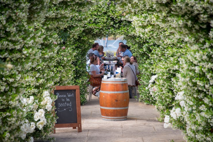 Surrounded by jasmine at Robert Oatley cellar door