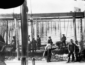 Hauling in Seines - B.C. Salmon Fisheries. Source: Albertype Company/Library and Archives Canada/PA-031646
