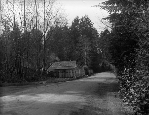 Cummings' Cottage in Stanley Park, 1928. Source: City of Vancouver Archives, AM640-S1-: CVA 260-45