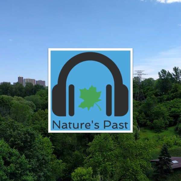 Nature's Past Background and Logo