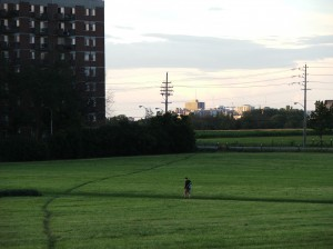 Desire Lines (facing downtown) - P Anderson - August 2013 - CEF