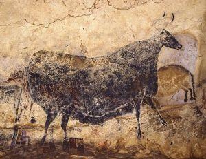 La Vache noire. Musée des sciences de Montréal. © Philippe Psaila