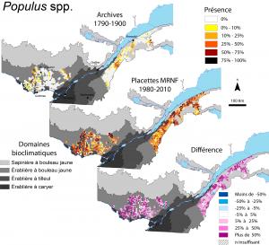 Figure 5. Distribution spatiale de la fréquence d'occurrence des peupliers dans les observations d'arpenteurs du Québec méridional
