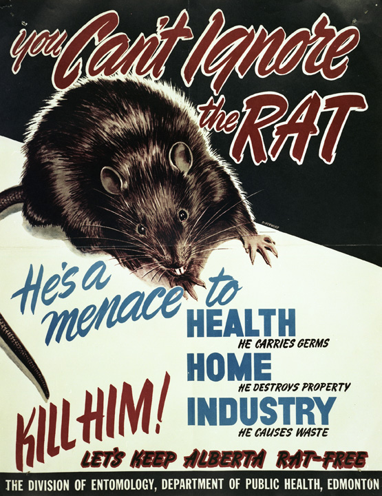 """""""You Can't Ignore the Rat,"""" Provincial Archives of Alberta. Commissioned and Distributed by Division of Entomology, Department of Public Health, Government of Alberta, 1950."""