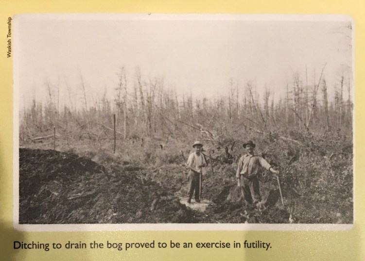 Photo of homesteaders trying to ditch the Big Bog