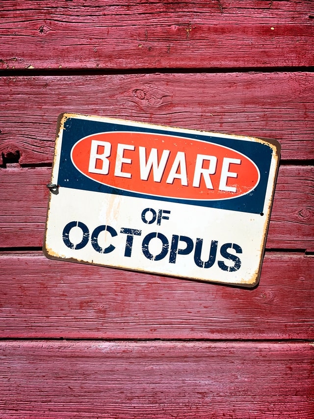 Warning sign on wall reads beware of octpus