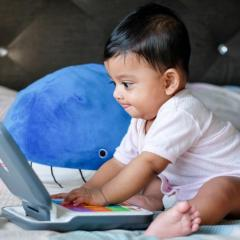Determined infant uses laptop