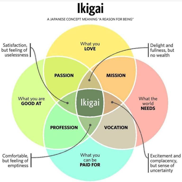 Ikigai your Coaching Niche