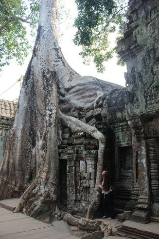 cambodia-taprohm3