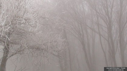 Snow in Macedonia, Greece