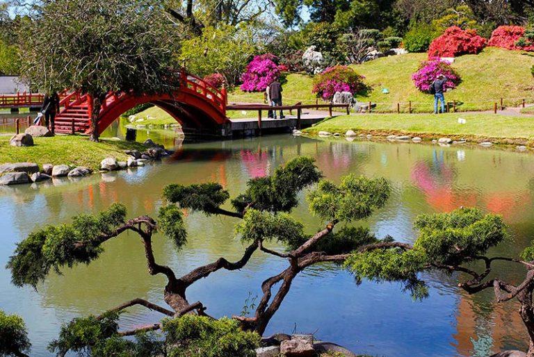 Landscape inside the Japanese Garden in Buenos Aires