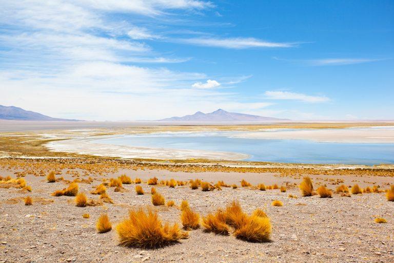 The Tara salt flat in Atacama Chile