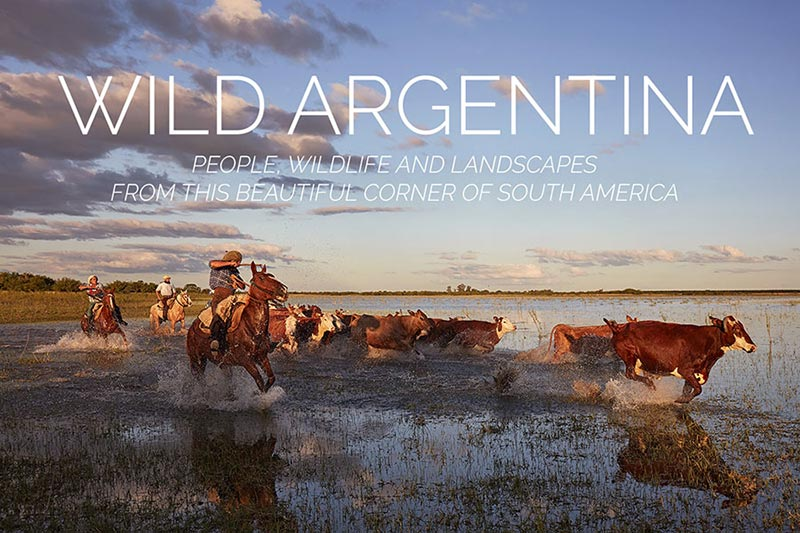 Argentina Travel Photography