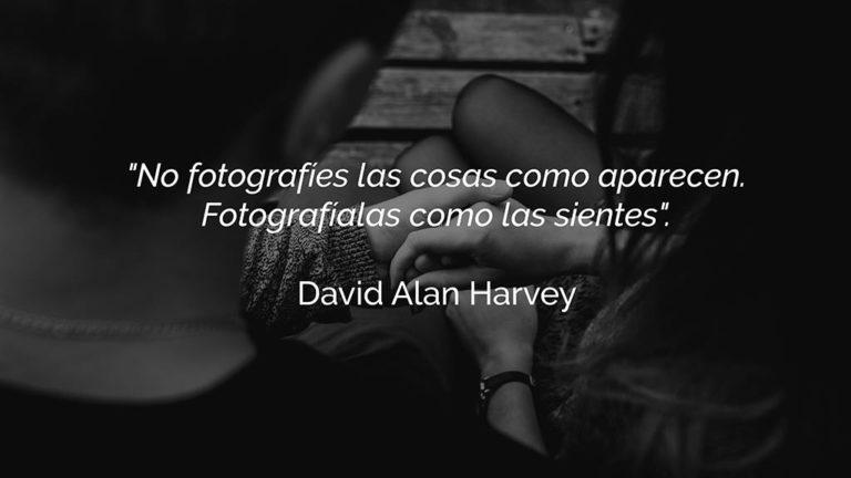 frases fotografia harvey