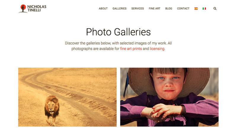 portfolio showcase nicholas tinelli