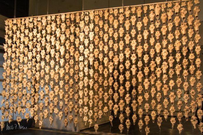 Máret Ánne Sara, Vorhang aus 300 Rentierschädeln