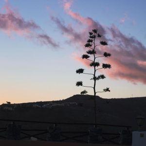 Abendhimmel auf #gomera