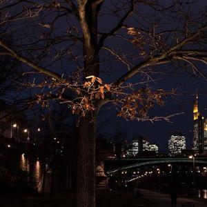 Frankfurt am Abend. #frankfurt #skyline