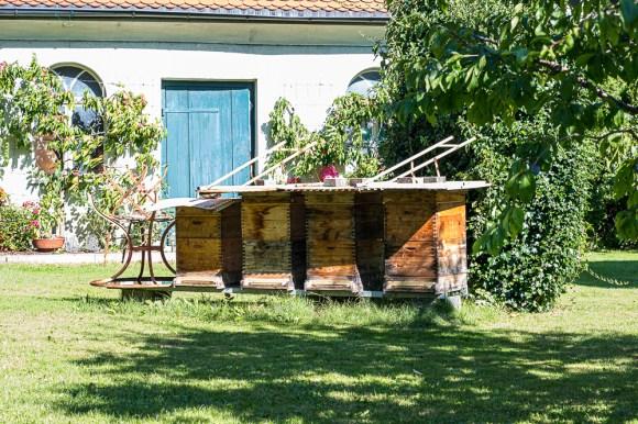 Bienenstöcke im Vorgarten