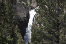 Tower Fall in Yellowstone National Park