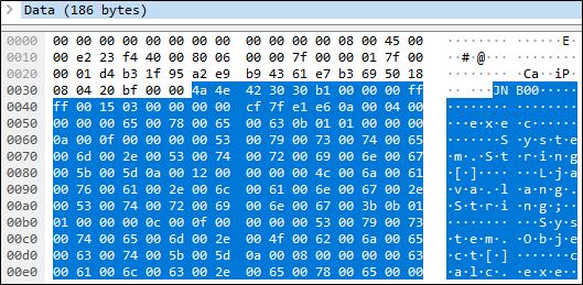 Hex dump of the packet that calls exec().