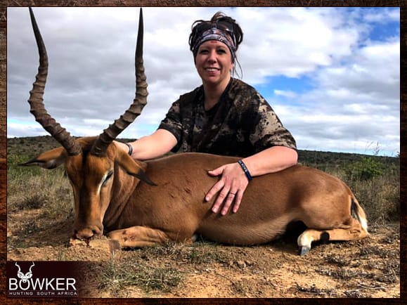 Impala guided hunt