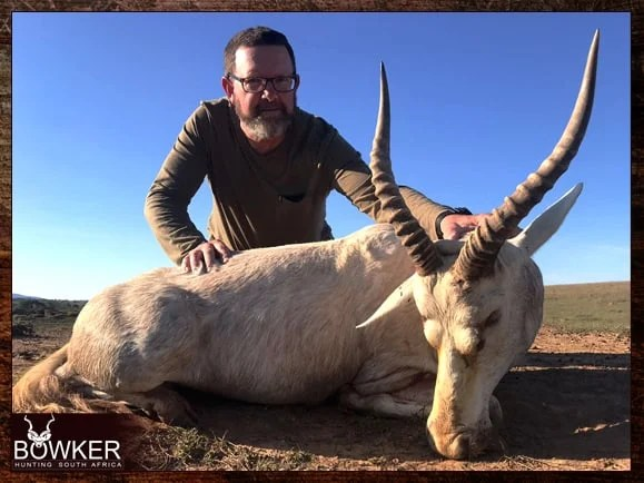 White blesbok shot using quad shooting.