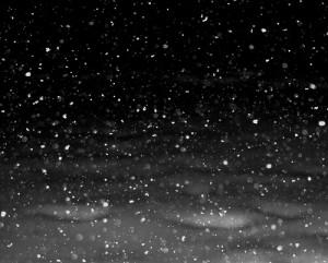 Snow falling through the night
