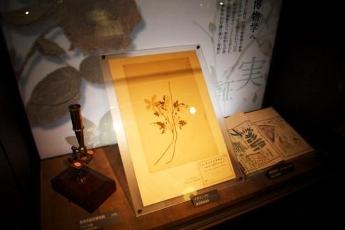 032_Museum_04062013