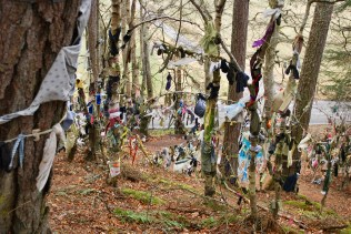 Adorned trees at the Clootie Well