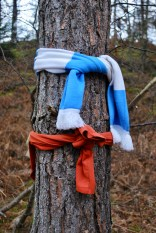 Scarf on tree at the Clootie Well