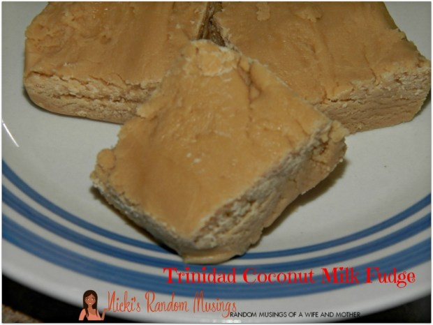 Coconut Milk Fudge