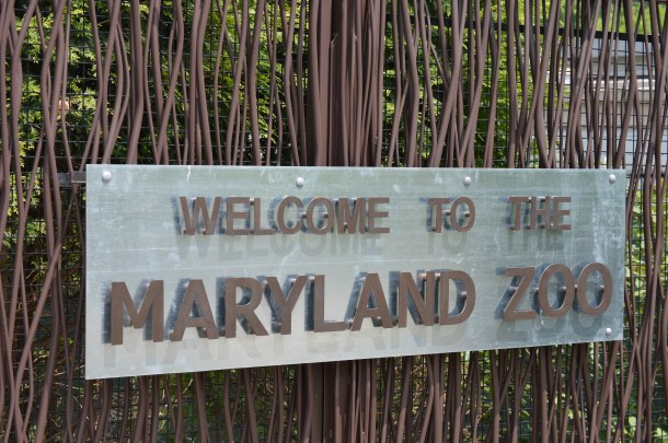 Maryland Zoo (10)
