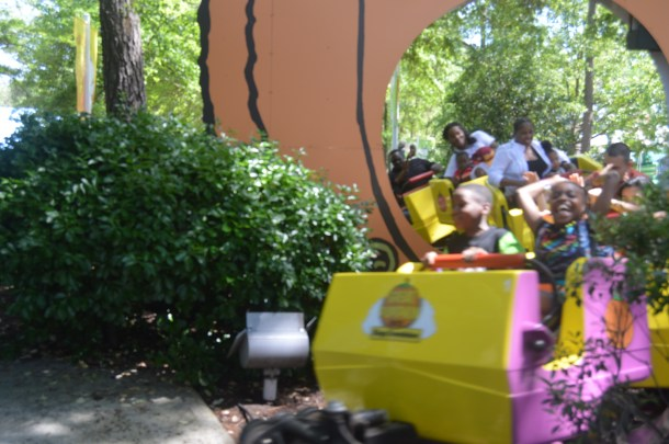 Kings Dominion Spring Bloom (29)