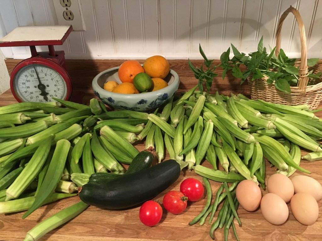 Fresh eggs and produce on the homestead