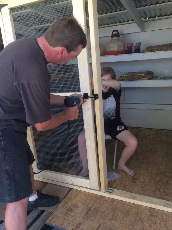 Screen door in chicken coop