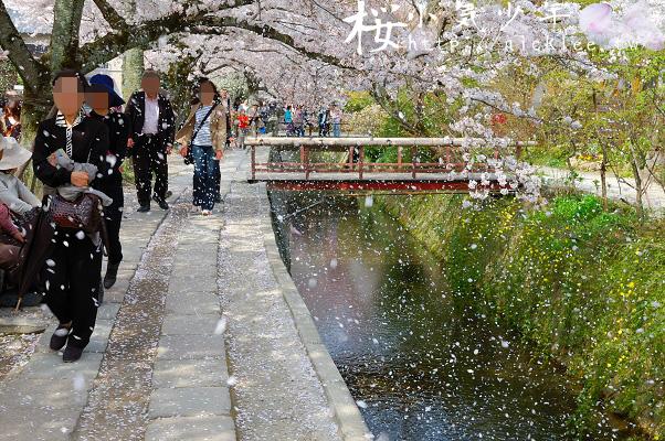 京都行程懶人包-賞櫻、賞楓都適宜的南禪寺路線