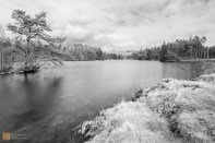 The beautiful Tarn Hows