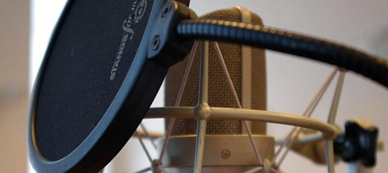 Pop Filter for recording vocals with condenser microphone