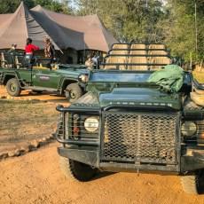 Car Spotting on Safari in South Africa