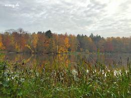 Guten Morgen See